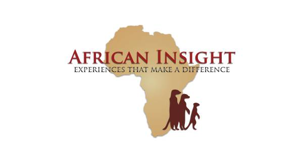 African Insight Logo